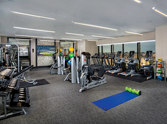 photo of 2Hopkins apartments in Baltimore's fitness center with rows of eliptical machines, weight machines and free weights